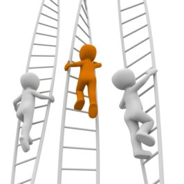 Learn How To Reach The Top Of The Career Ladder