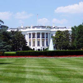 4 Ways To Get Started In Politics